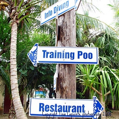 Poo training sign