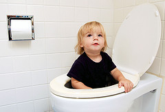 Potty training a child stuck in a toilet